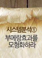 시스템분석① 부메랑효과를 모형화하라