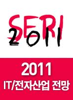 2011 IT/전자산업 전망