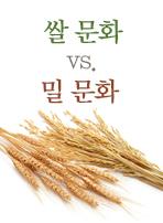 쌀 문화 vs. 밀 문화
