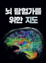 뇌 탐험가를 위한 지도