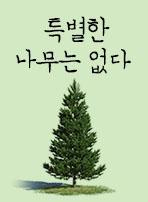 특별한 나무는 없다